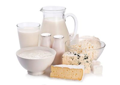 dairy products harmful for a dog