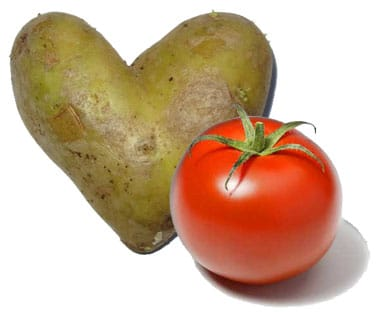 raw potato and tomato for doggy