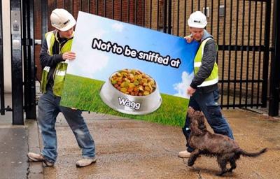 marketing in pet food